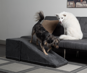 Dog Ramp from PuppyStairs.com